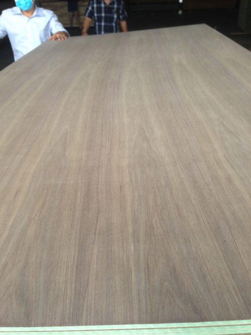 Black Walnut Veneer panels